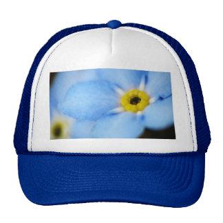 Forget-Me-Nots 5 Baseball Cap Hat