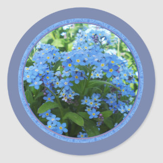 Forget me nots classic round sticker