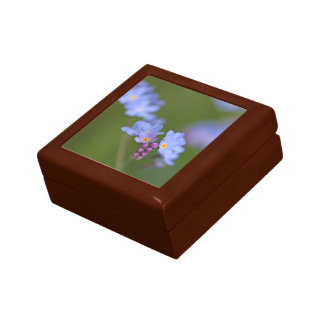 Forget Me Nots Small Square Gift Box