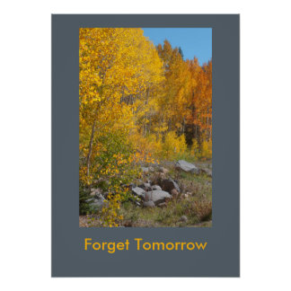 """Forget Tomorrow"" Autumn on the Grand Mesa Poster"