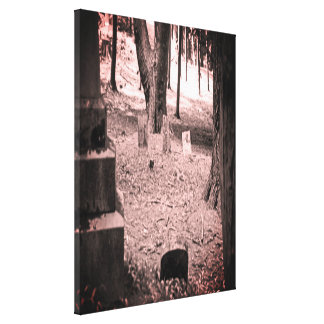 Forgotten Grave Canvas Print