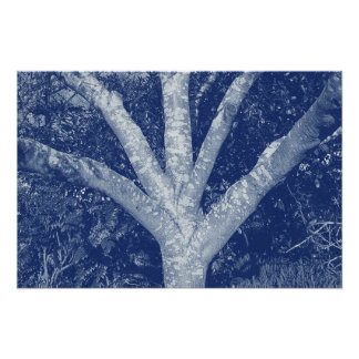 Forked Branches - Cyanotype Effect Poster