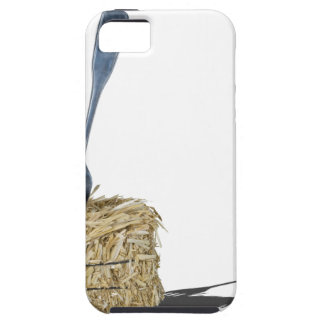 ForkInBaleOfHay061315.png Case For The iPhone 5