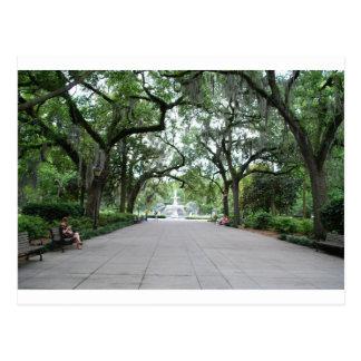 Forsyth Park in Savannah, GA Postcard