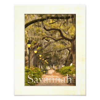 Forsyth Park - Savannah, GA Photo