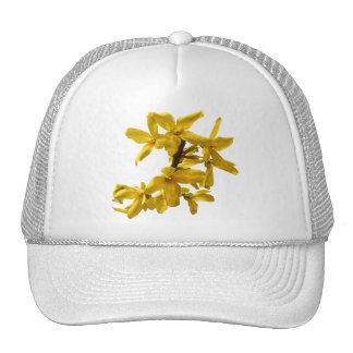 Forsythia Hat