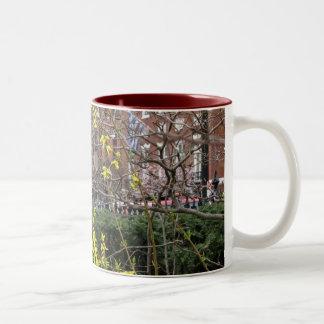 Forsythia Coffee Mugs