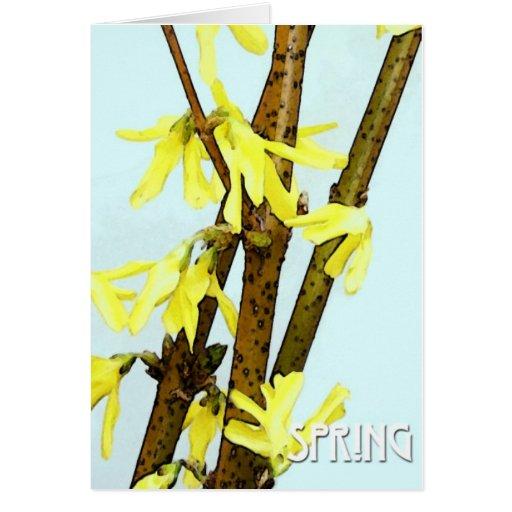 Forsythia Spring Card