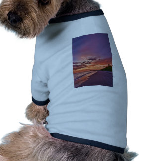 Fort Myers Beach Sunset Dog Tee Shirt