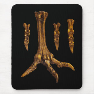 Fossil Foot Illustration Mouse Pad