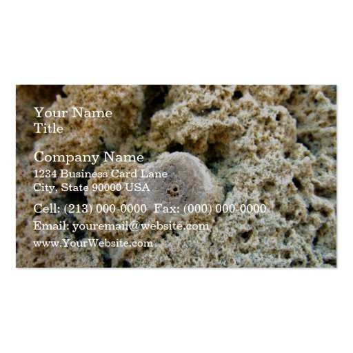 Fossil in limestone business card template