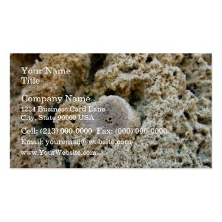 Fossil in limestone pack of standard business cards