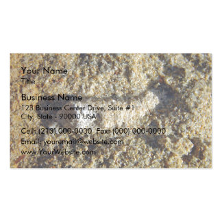 Fossil root in limestone pack of standard business cards