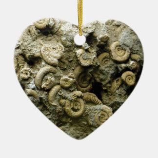 fossil shells art ceramic ornament