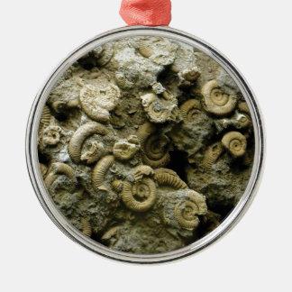 fossil shells art metal ornament