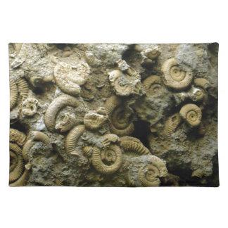 fossil shells art placemat