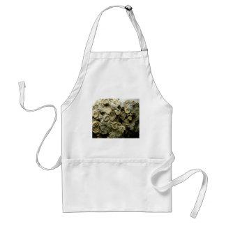 fossil shells art standard apron