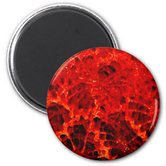 Fossilized coral red dyed stone fridge magnet