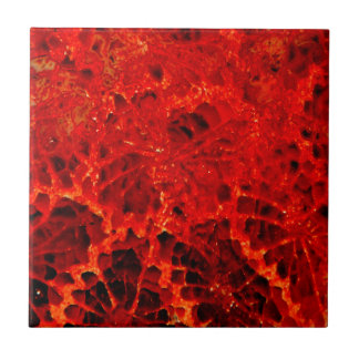 Fossilized coral red dyed stone small square tile
