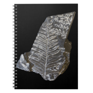 Fossilized Fern Leaves Photo on Black Background Notebook
