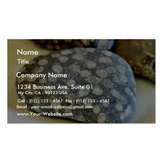 Fossils Rocks Coral Business Cards