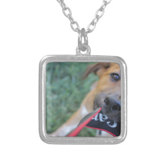 Foster Dog Tug of War Silver Plated Necklace