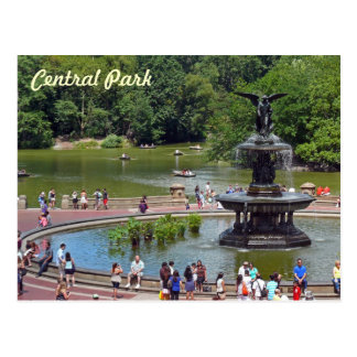 Fountain and Lake in Central Park, New York City Postcard