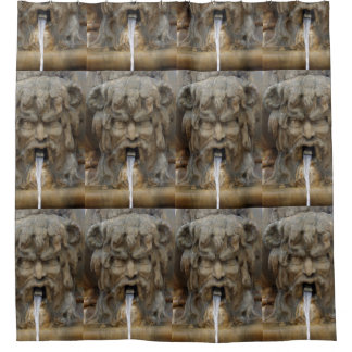 Fountain Gargoyles Shower Curtain