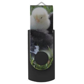 Four Black and Yellow Baby Chicken chicks Swivel USB 2.0 Flash Drive