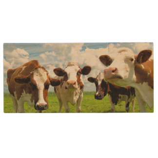Four chatting cows interrupted in their daily chit wood USB 2.0 flash drive