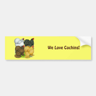 Four Cochin Hens Bumper Sticker