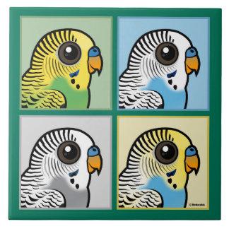 Four Color Budgies Tile