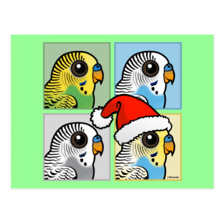 Four Color Xmas Budgies Postcard