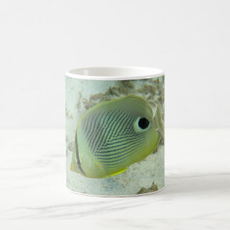 Four-eyed Butterfly fish Mugs
