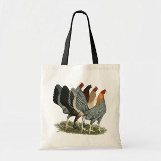 Four Gamefowl Hens