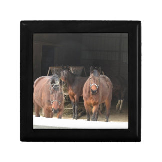 Four Horses Small Square Gift Box