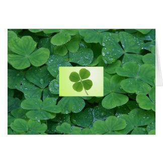 four leaf clover greeting card