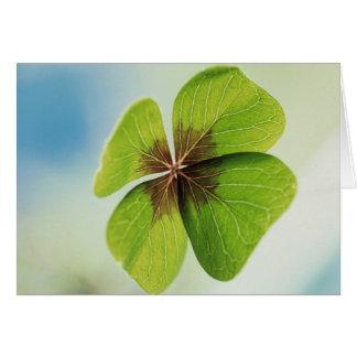 Four-Leaf Clover Greeting Card