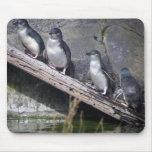 Four Little Penguins Mouse Pad