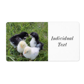 four lovely chicks shipping label