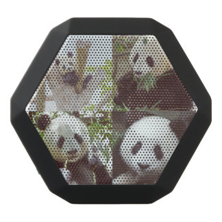 four panda images collage black bluetooth speaker