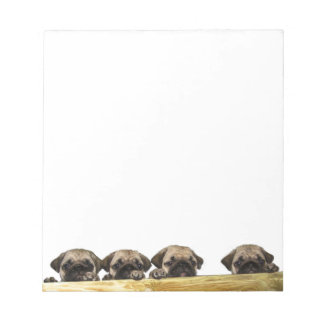 Four Pugs Notepad