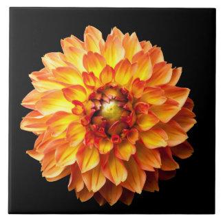 Four Queens Dahlia Flower Large Square Tile