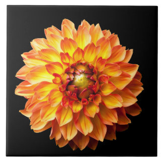 Four Queens Dahlia Flower Tile
