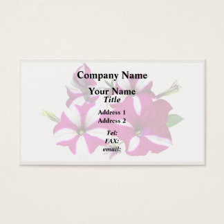Four Red and White Petunias Business Card