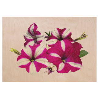 Four Red And White Petunias Wood Poster
