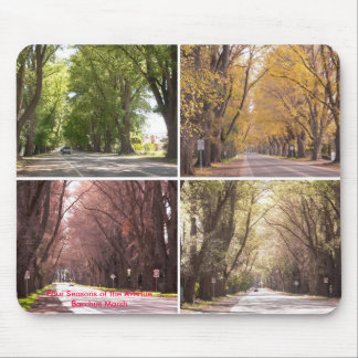 Four Seasons of the Avenue, Bacchus Marsh Mouse Mats