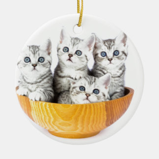 Four young cats sitting in wooden bowl on white ceramic ornament