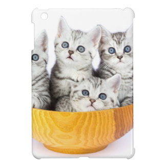 Four young cats sitting in wooden bowl on white iPad mini covers