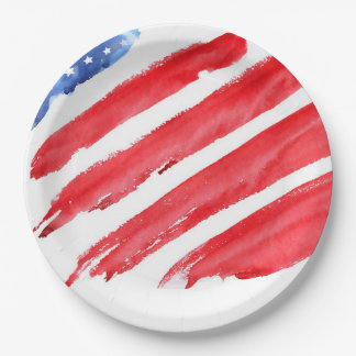 fourth of July colorful barbecue 9 Inch Paper Plate
